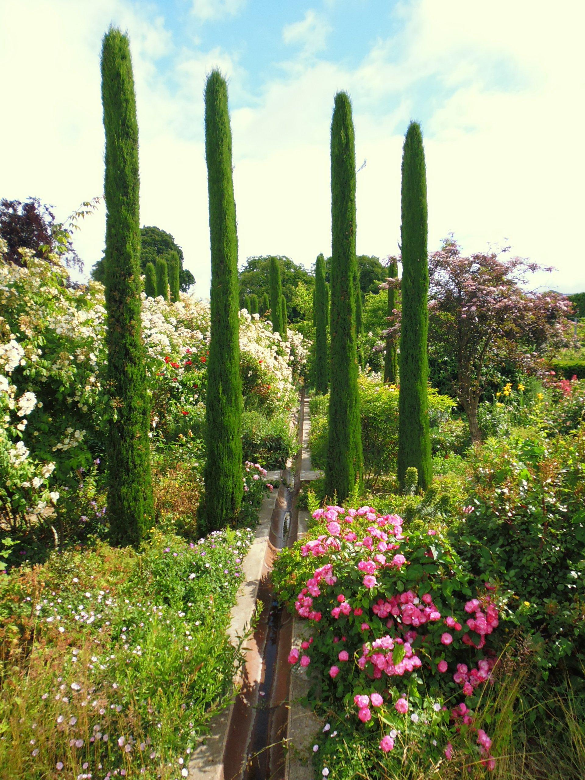 Le jardin des plantes d'Orléans sur la route de rose dans ...
