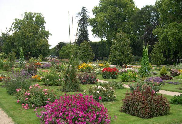 JDP Le Concours International de Roses d'Orléans (2)