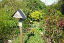 JDP Le jardin de roses (6)