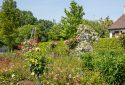 Route de la Rose - Jardin à theme Quies-sur-Bezonde - Crédit photo = IOAproduction - Sébastien Richard (15)