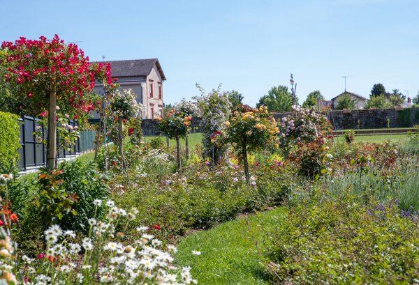 Route de la Rose - Jardin à theme Quies-sur-Bezonde - Crédit photo = IOAproduction - Sébastien Richard (2)