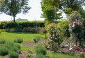 Route de la Rose - Jardin à theme Quies-sur-Bezonde - Crédit photo = IOAproduction - Sébastien Richard (6)