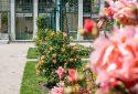 Route de la Rose - Jardin des plantes Orléans - Crédit photo = IOAproduction - Sébastien Richard (16)