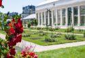 Route de la Rose - Jardin des plantes Orléans - Crédit photo = IOAproduction - Sébastien Richard (5)