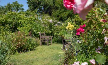 Route de la Rose - Jardin personnel d'André Eve - Crédit photo = IOAproduction - Sébastien Richard (20)