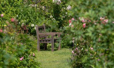 Route de la Rose - Jardin personnel d'André Eve - Crédit photo = IOAproduction - Sébastien Richard (30)
