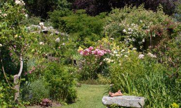 Route de la Rose - Jardin personnel d'André Eve - Crédit photo = IOAproduction - Sébastien Richard (32)
