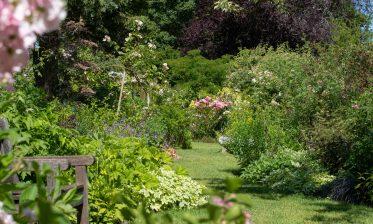 Route de la Rose - Jardin personnel d'André Eve - Crédit photo = IOAproduction - Sébastien Richard (35)