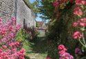 Route de la Rose - Yèvre-le-Châtel - Crédit photo = IOAproduction - Sébastien Richard (17)