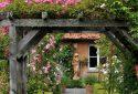 arboretum-photos-jean-françois-grossin